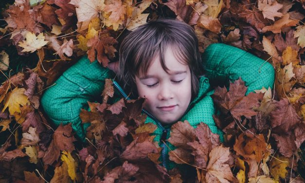 How to teach children to respect nature?
