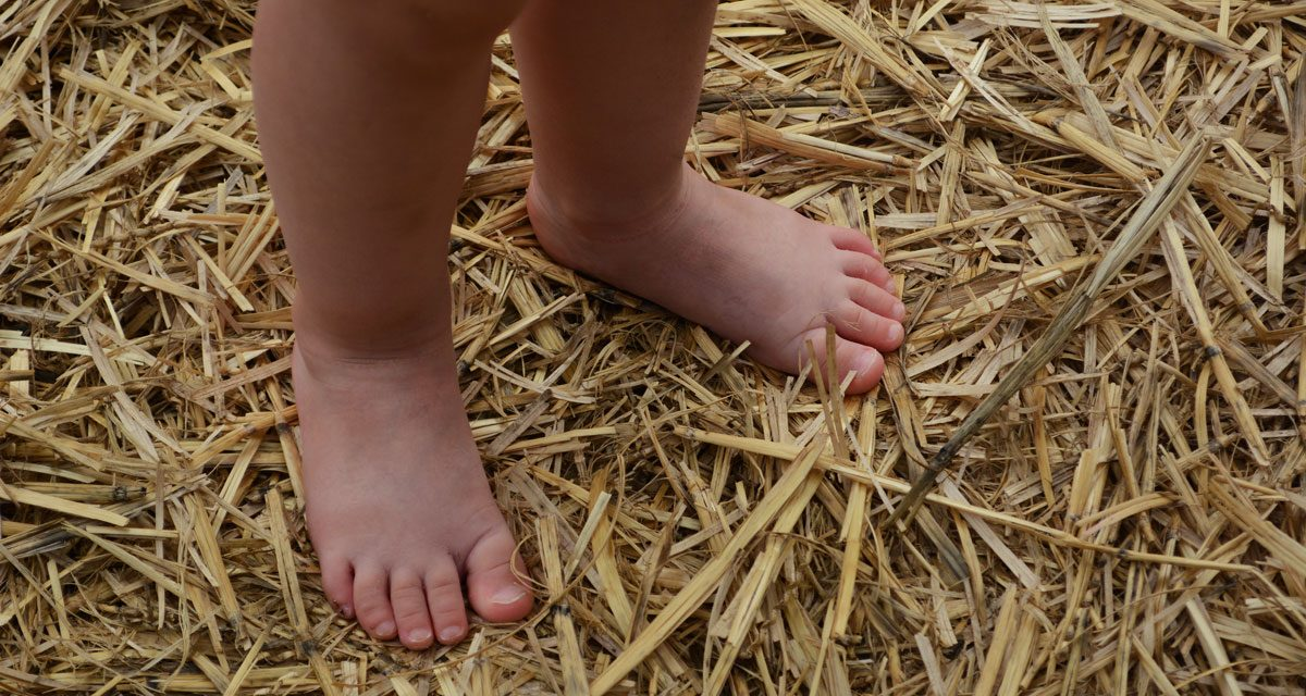An unusual barefoot walk with your children