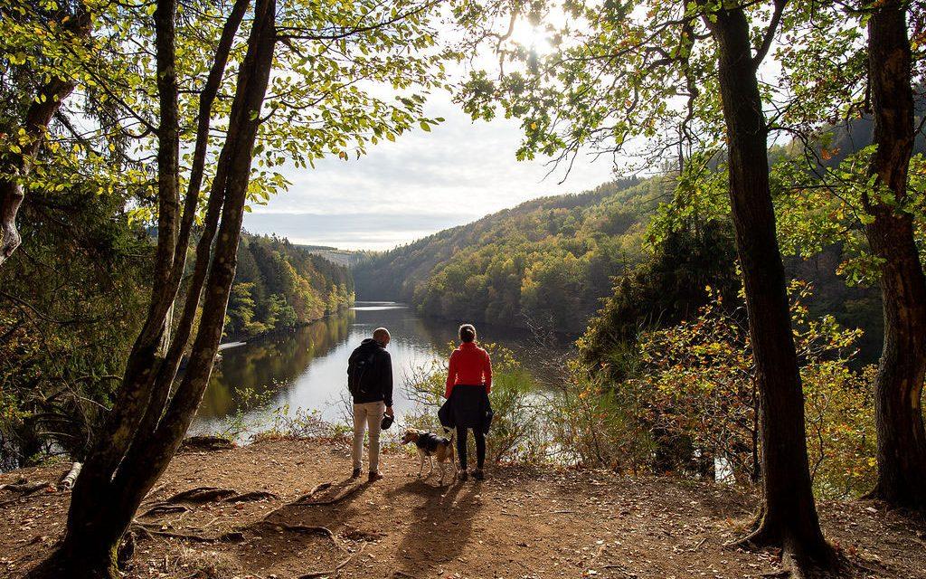 Hiking with your dog around Nisramont Lake