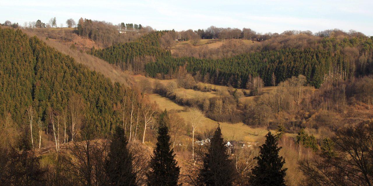 Hike with a gourmet break in the region of Malmedy