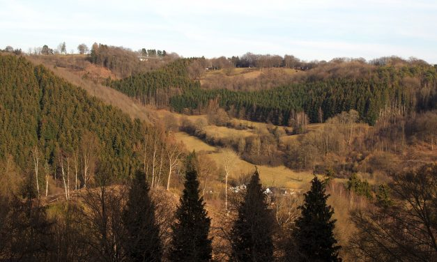 Hike with a gourmet break in the region of Malmedy