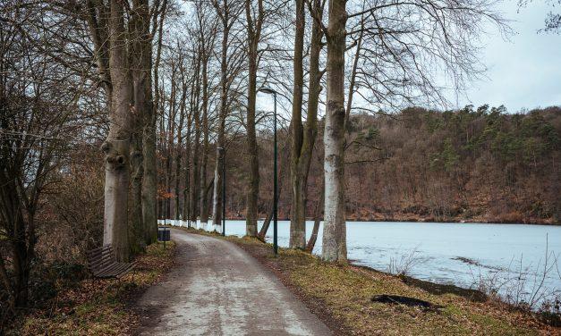 Forest walk in Spa, around the Lake Warfaaz