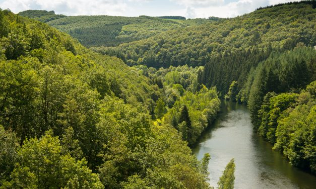 7 reasons that make the Ardennes an unforgettable destination