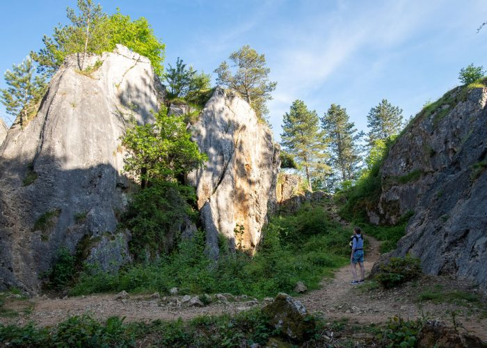 Belgian canyon at the Fondry des Chiens