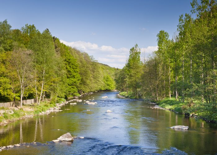 In the heart of nature or even in a hamlet, the Ardennes can provide you with the tranquillity that you want.