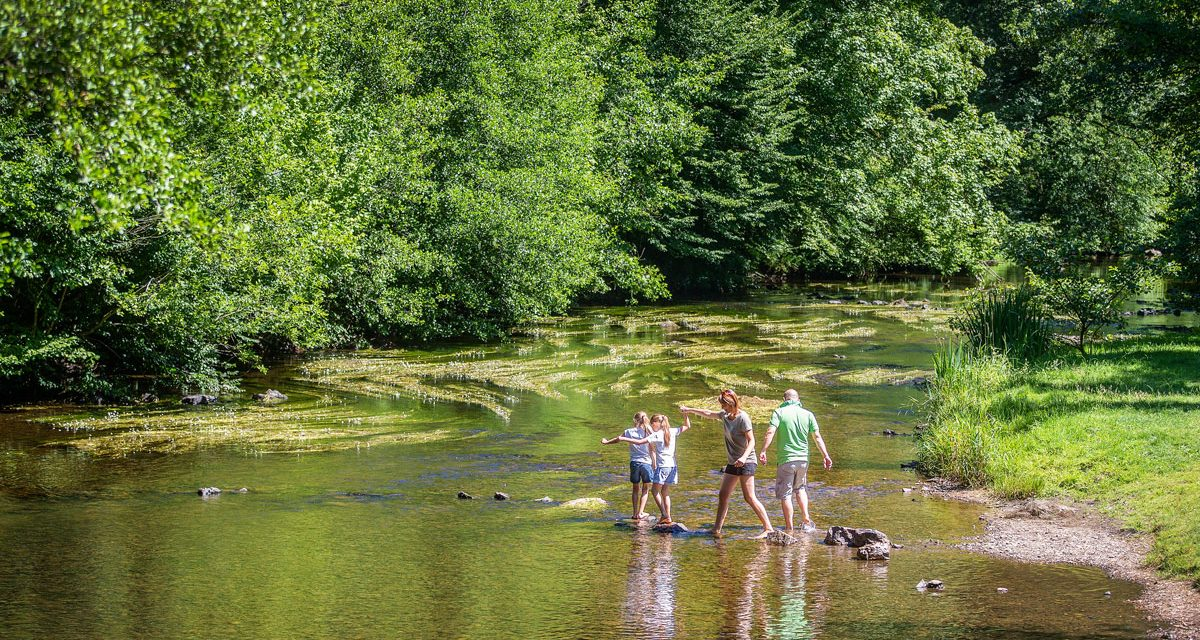 Nature and outdoor swimming: discover our favourite spots in the Ardennes