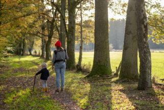 TOP 5 : découvrez nos plus belles balades d'automne à faire en Ardenne
