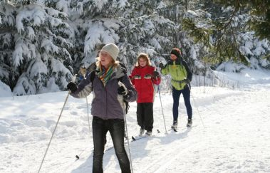 Ski slopes of the Baraque Michel-Ski de fond to Province of Liège