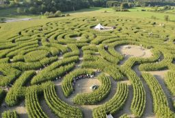 Labyrinth in Province of Luxembourg