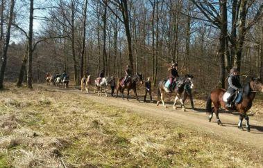 Ecurie des îles-Equitation to Saint-Hubert