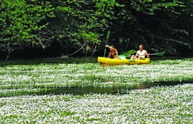 <p>Les passeurs réunis: descente en kayak</p>-Kayak to Province of Luxembourg