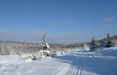 <p>Cross country skiing classes in the Ardennes</p>-Sports et loisirs to