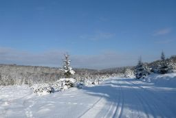 <p>Cross country skiing classes in the Ardennes</p> in