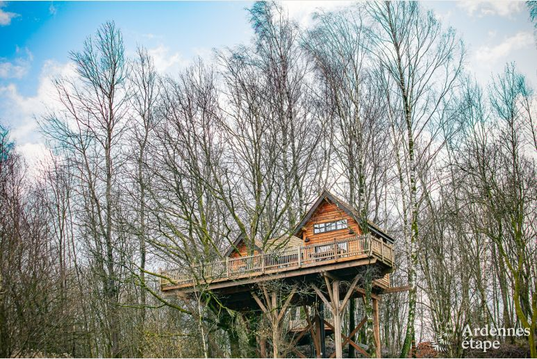 Exceptional in Bertrix for 4/6 persons in the Ardennes