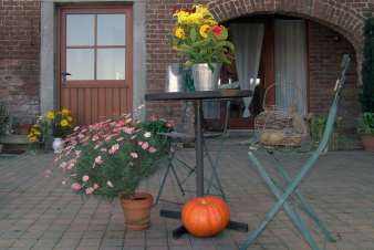 Couples holiday in a cosy cottage near hiking paths to rent in Durbuy