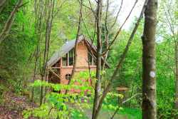 Discover a romantic stay in Houffalize in this chalet for 2 persons