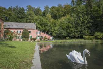 Holiday cottage in Orval for 12 persons in the Ardennes